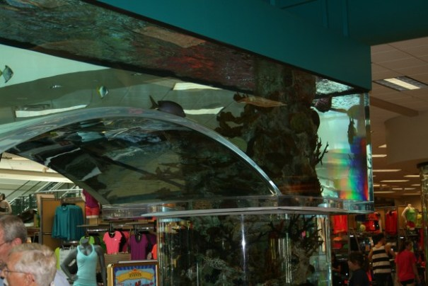 There were two arches as well as three pillars that comprised the aquarium.