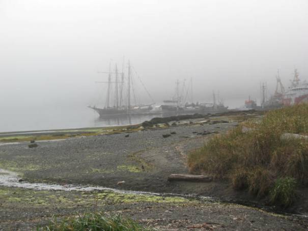 Port Hardy in early morning fog.  Locals call August, Fogust.