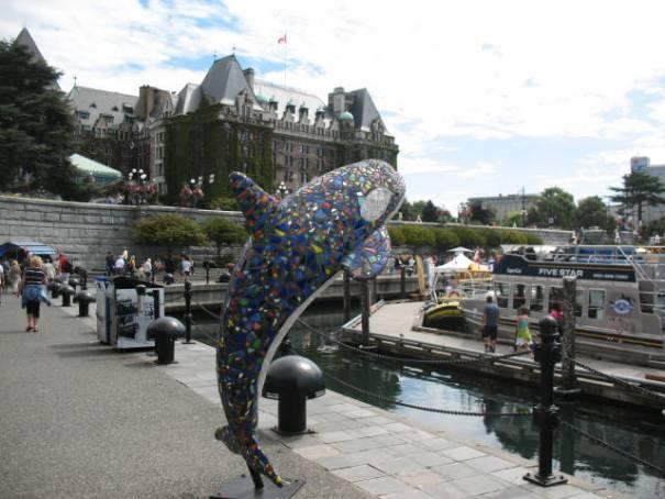 Killer Whale Art.