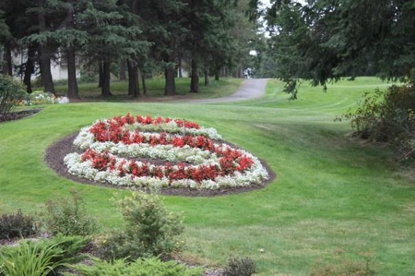 Stoneridge resort flowers.