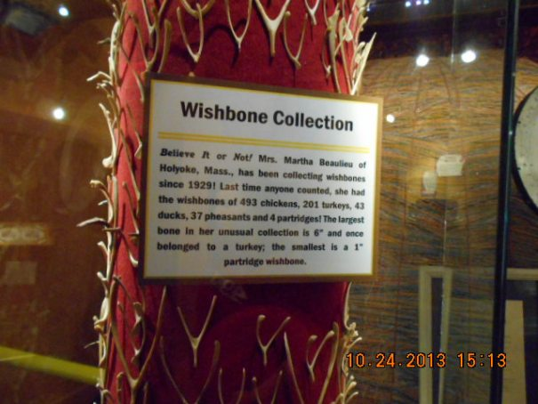 Wish bone collection.