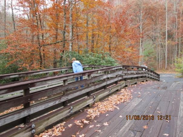 Pretty woman on a neat wooden bridge.
