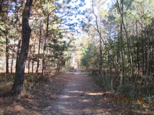 A path we walked down to a point of land on the James River.