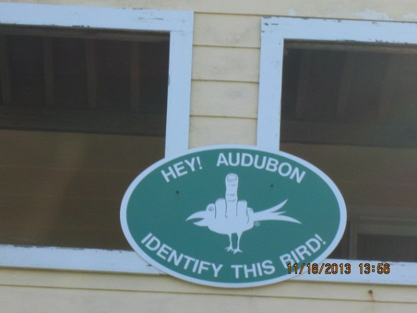 Not sure what is going on with this bird hater.  We love the Audubon Society.