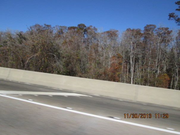 A long bridge in Alabama and the trees took on a ghost like appearance.