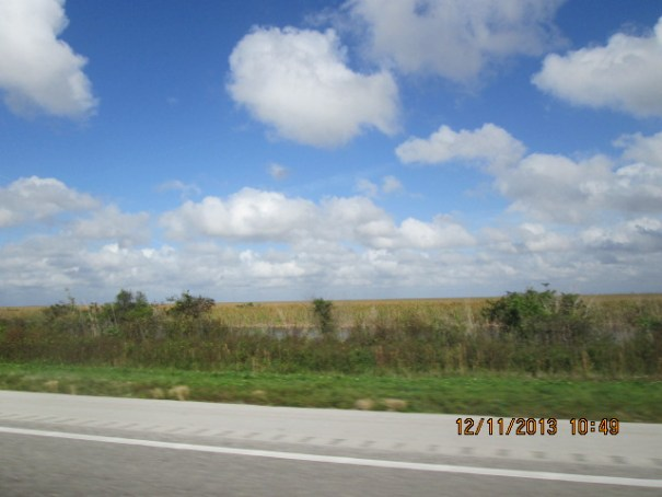 I-75, Allegator Alley, the everglades.