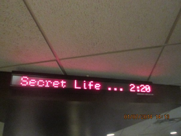 Saw the Secret Life of Walter Mitty.