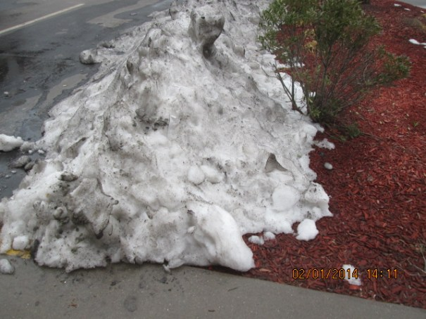 It is 55 degrees, and still piles of snow, must have had a lot.