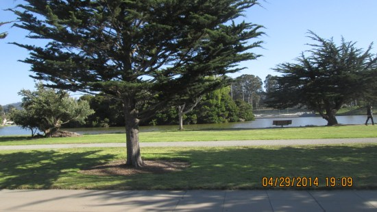 We call it Dennis the Menace Park, because the creator, Hank Ketcham,  lived in the area,