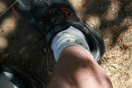 No walk up the hill is without sticker-burrs in your socks and shoes.