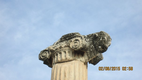 Ionic with the scrolls, but a ram's head is added, mixed capital.