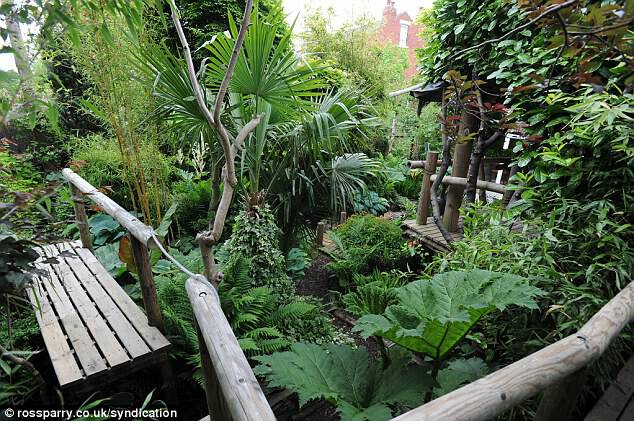 Adapting: Despite temperatures in Yorkshire often dropping below freezing in the winter months, Mr Wilson says his tropical plants manage to British weather surprisingly well