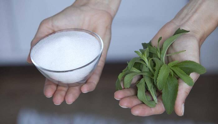 Στέβια, ένα ακόμη δηλητήριο στα αναψυκτικά μας – Προκαλεί σημαντική μείωση των τιμών τεστοστερόνης και υπογονιμότητα