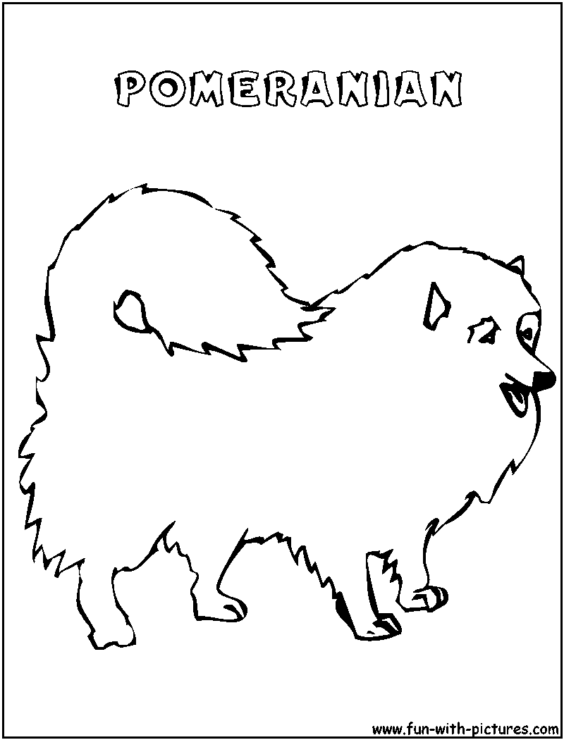 Pomeranian Dog Coloring Pages