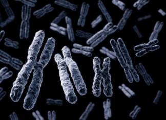 Hormonas bioidenticas