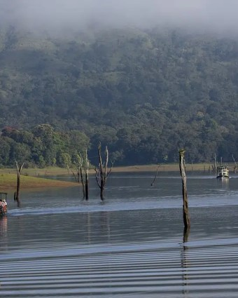 12 Thekkady Adventure Activities You Can Never Refuse
