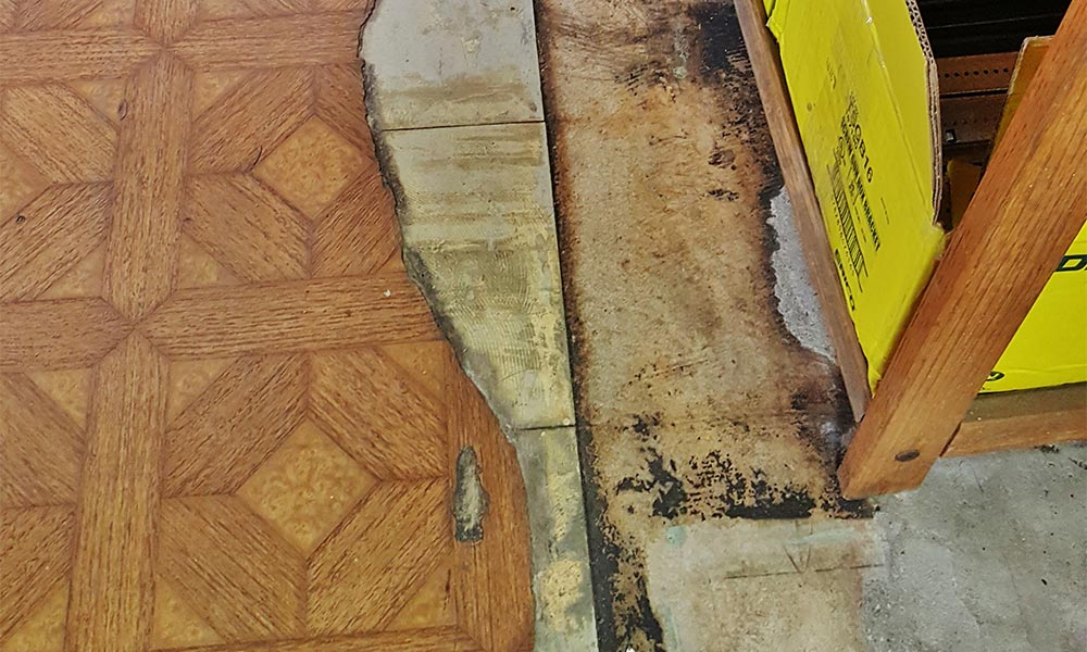 asbestos project guide for property