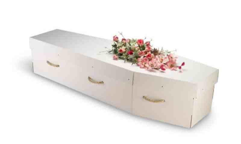 Cercueil en carton