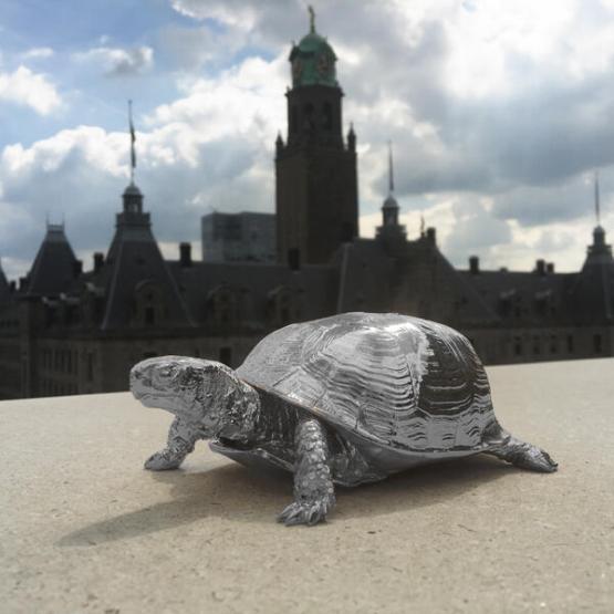 turtlebox silver