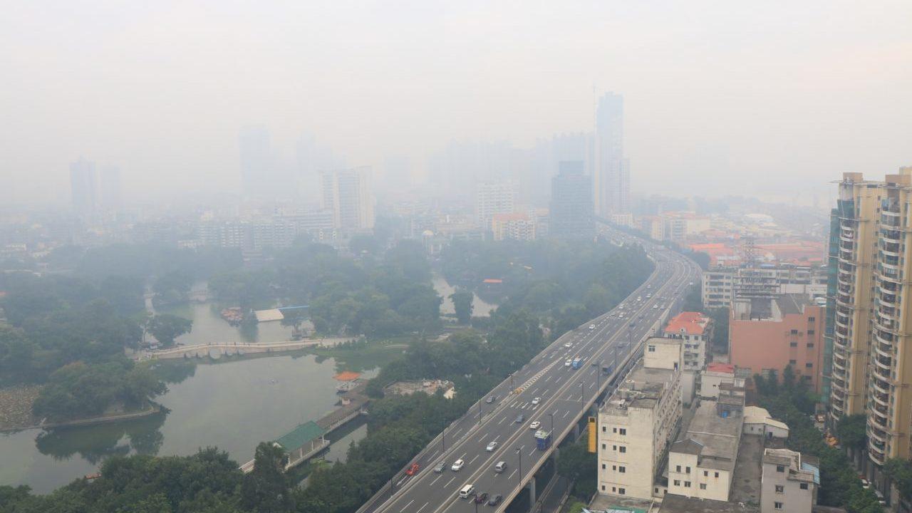 中国のアレルギー事情!在住者に聞く7つの特徴!
