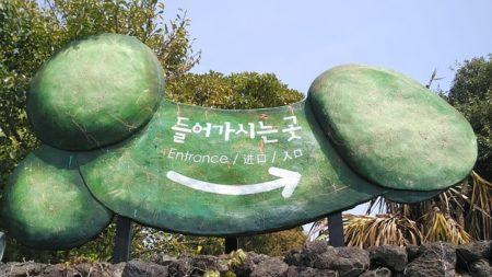 韓国マニアック旅行!在住者のおすすめ観光スポット10選!チェジュ島