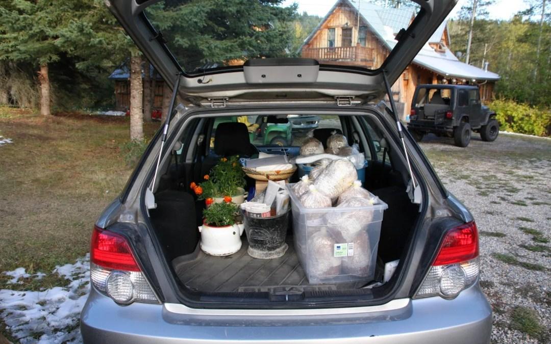 Tara's car
