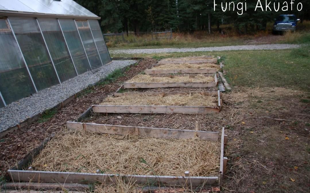 Straw in Garden