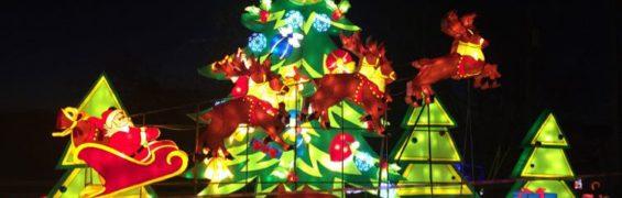 Zoofari Chinese Lantern Festival Christmas tree