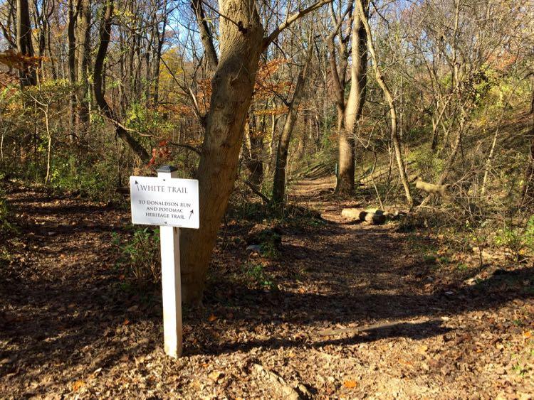 Potomac Overlook Regional Park trails