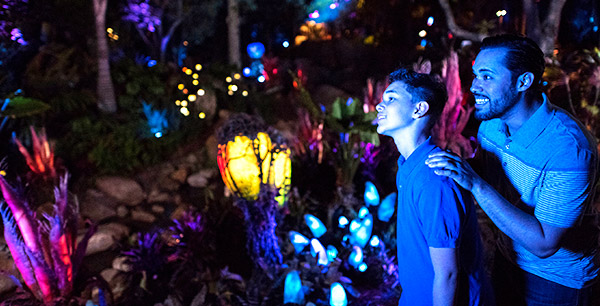 World of Avatar night Flora