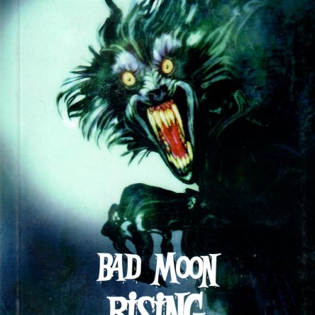 BAD MOON RISING: THE PUFFIN BOOK OF MYSTERY STORIES