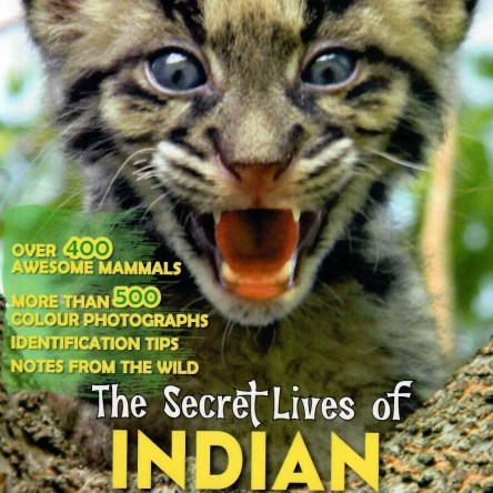 THE SECRET LIVES OF INDIAN MAMMALS