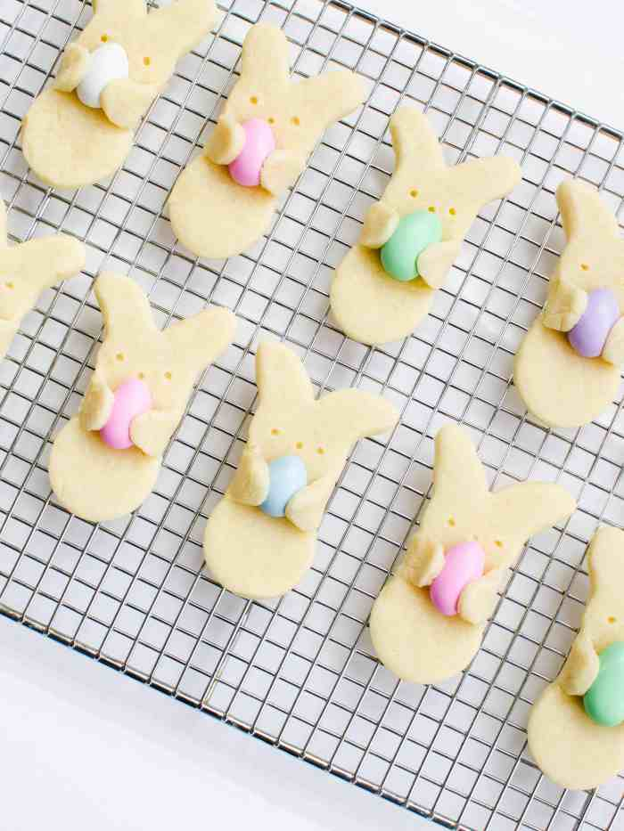 Make these Easter bunny cookies for your Easter celebration for for a special Easter treat for kids.