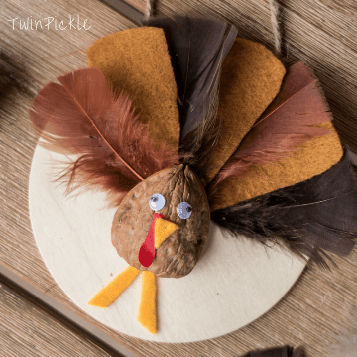 cute walnut turkey craft from Twin Pickle