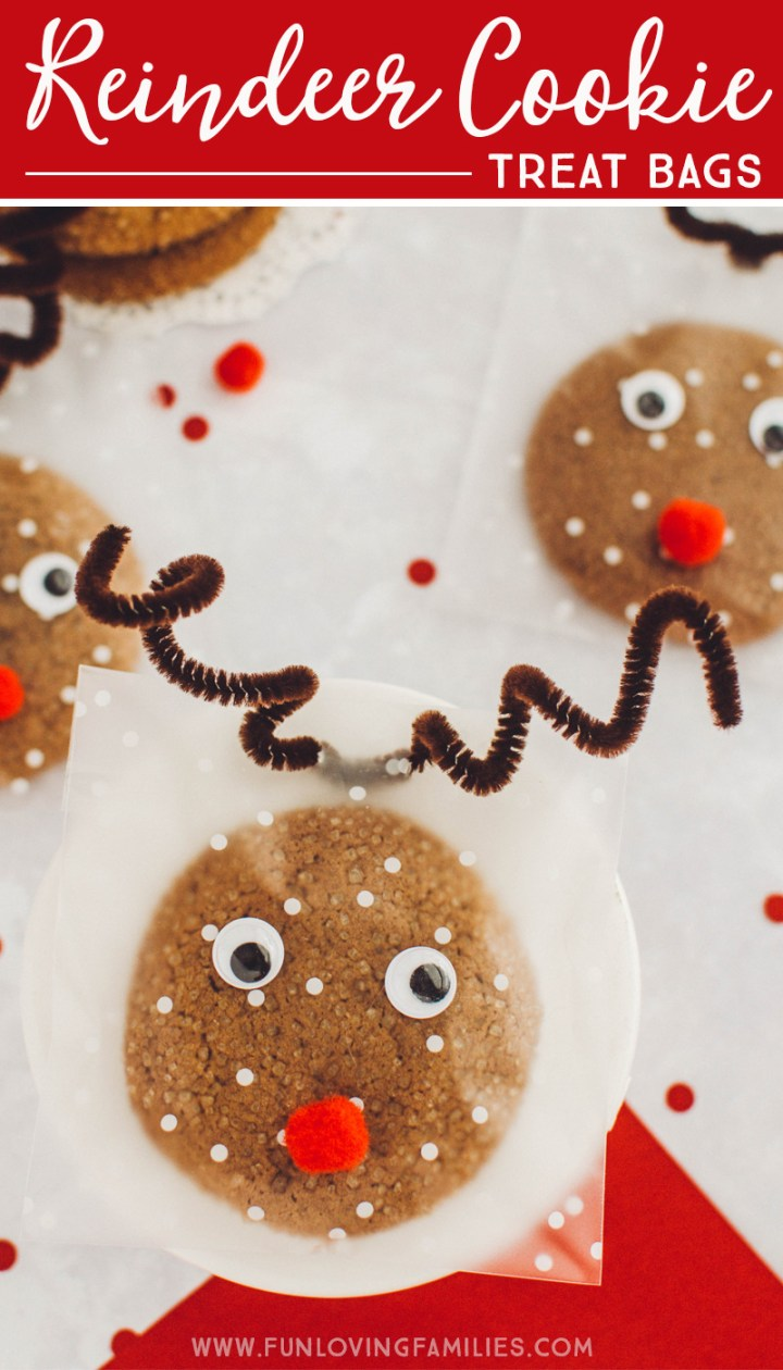 Reindeer cookie treat bags DIY