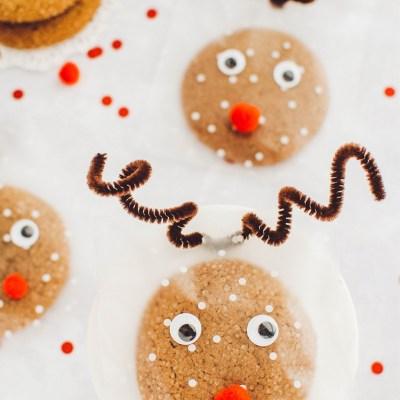 Christmas Reindeer Cookie Treat Bag