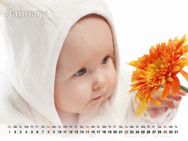 babies-calendar-01