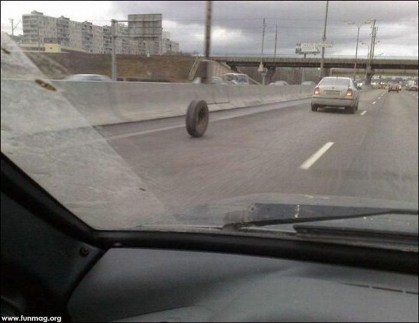 funny-car-photos- (2)