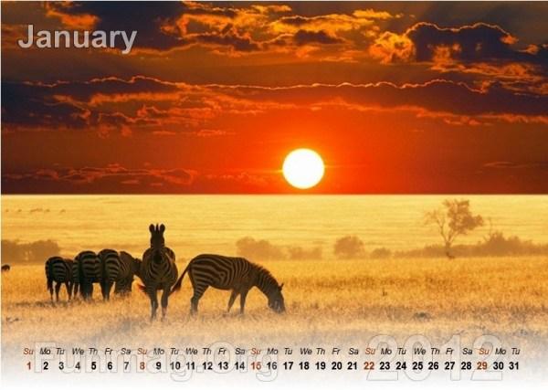 animals-calendar- (1)