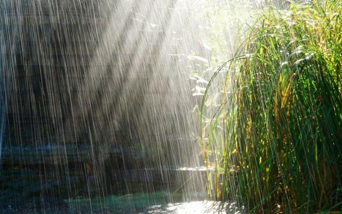 rain-photography- (4)