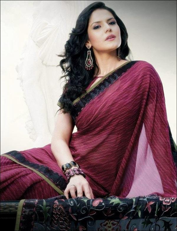 zarine-khan-saree-collection- (24)