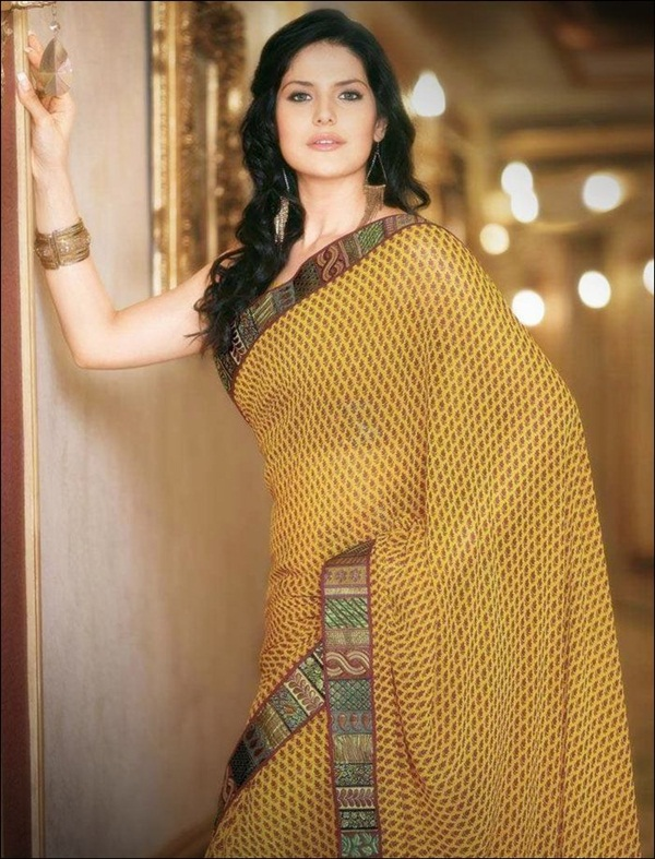 zarine-khan-saree-collection- (25)