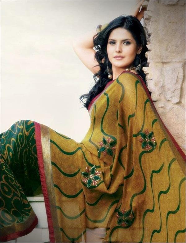 zarine-khan-saree-collection- (28)