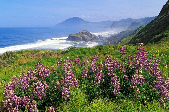 beautiful-nature-views-of-california- (11)