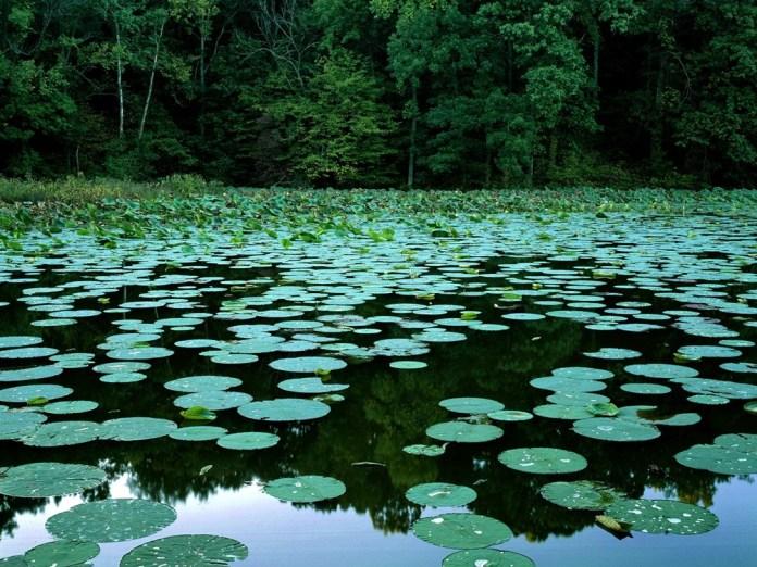 beautiful-natural-lakes-26-photos- (7)