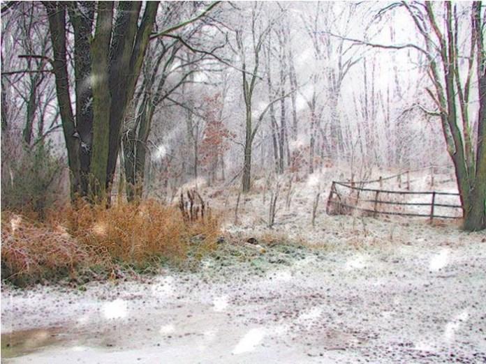 beautiful-winter-scenery- (12)