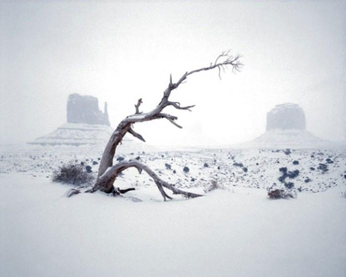beautiful-winter-scenery- (15)