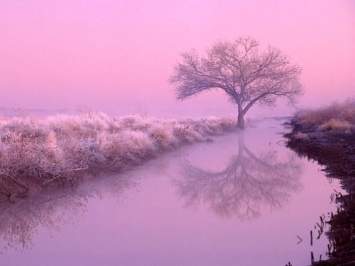 beautiful-winter-scenery- (23)