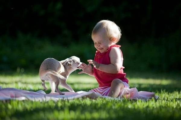 funny-baby-pictures- (20)