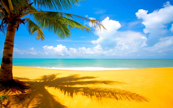 beautiful-beach-pictures- (11)